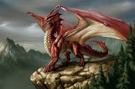 Photo of a dragon